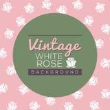Fondo de las rosas blancas del vintage Imagen de archivo