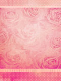 Fondo de las rosas del vintage Fotografía de archivo libre de regalías
