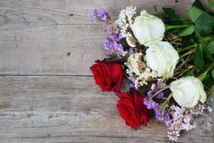 Fondo de las rosas rojas y blancas Foto de archivo libre de regalías