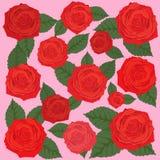 Fondo de las rosas y de las hojas del verde ilustración del vector