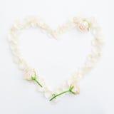 Fondo de las tarjetas del día de San Valentín Corazón de los pétalos de rosas en el fondo blanco Endecha plana, visión superior Fotos de archivo libres de regalías