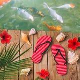 Fondo de las vacaciones de verano con chancletas en cubierta de madera Visión desde arriba Imágenes de archivo libres de regalías