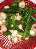 Fondo de las verduras frescas fotografía de archivo