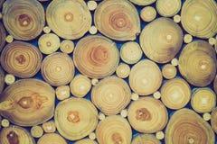 Fondo de los anillos de árbol Imagenes de archivo
