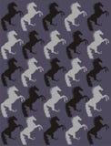 Fondo de los caballos Imagen de archivo