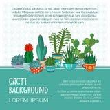 Fondo de los cactus del vector Fotografía de archivo