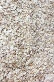 Fondo de los cereales Arenas de la cebada foto de archivo libre de regalías