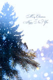 Fondo de los días de fiesta de Art Christmas; luz del árbol Imágenes de archivo libres de regalías