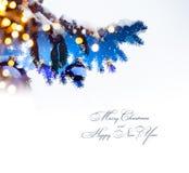 Fondo de los días de fiesta de la Navidad; luz del árbol Fotografía de archivo