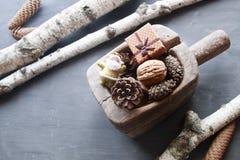 Fondo de los días de fiesta de la Navidad Objeto del pino Cones Santa y un regalo Estilo de la vendimia Imágenes de archivo libres de regalías