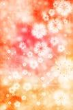 Fondo de los flores de cereza Foto de archivo