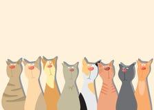 Fondo de los gatos Foto de archivo libre de regalías