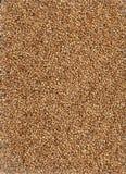 Fondo de los granos. Imagenes de archivo