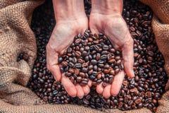 Fondo de los granos de café Granos de café en bolso Granos de café en la ha Fotos de archivo