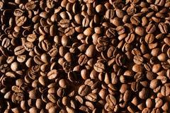 Fondo de los granos de café Foto de archivo libre de regalías