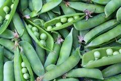 Fondo de los guisantes verdes Alimento biológico Imagen de archivo libre de regalías