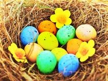 Fondo de los huevos de Pascua Imágenes de archivo libres de regalías