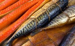 Fondo de los pescados foto de archivo