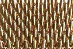 Fondo de los tornillos de cobre amarillo Fotos de archivo
