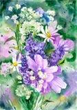 Fondo de los wildflowers de la acuarela Imagen de archivo libre de regalías