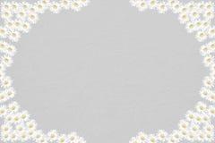 Fondo de luto con el marco de la flor de la margarita stock de ilustración