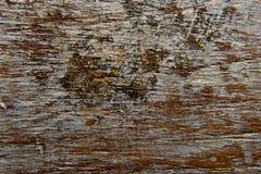 Fondo de madera Foto de archivo