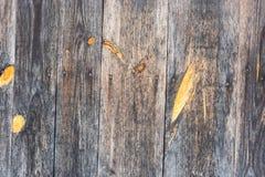 Fondo de madera Imágenes de archivo libres de regalías