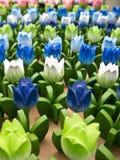 Fondo de madera agradable del tulipán Imagenes de archivo