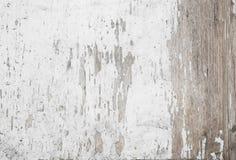Fondo de madera blanco de la vendimia Fotografía de archivo