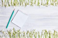 Fondo de madera con el marco de los snowdrops y el cuaderno de notas en blanco fotografía de archivo libre de regalías