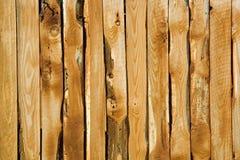 Fondo de madera de la pared Fotografía de archivo