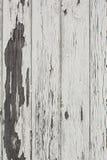 Fondo de madera de la pared del Grunge con la pintura blanca Fotos de archivo libres de regalías