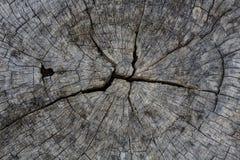 Fondo de madera de la textura del texturewood Imagen de archivo libre de regalías