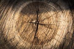 Fondo de madera de la textura/textura de madera Fotos de archivo libres de regalías