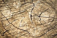 Fondo de madera de la textura/textura de madera Foto de archivo libre de regalías