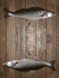 Fondo de madera de los pescados decorativo Fotografía de archivo