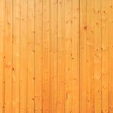 Fondo de madera de pino, cierre para arriba del panel de madera brillante Fotografía de archivo
