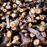 Fondo de madera del fuego Palillos de madera Fotografía de archivo libre de regalías