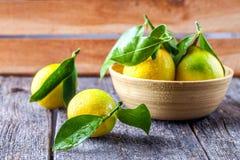 Fondo de madera del limón Foto de archivo libre de regalías