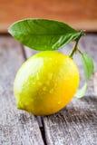 Fondo de madera del limón Fotografía de archivo libre de regalías