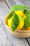 Fondo de madera del limón Foto de archivo