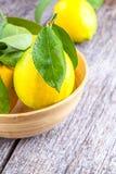 Fondo de madera del limón Fotos de archivo