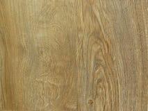 Fondo de madera del modelo de la textura del roble fino Grano exquisito de madera de roble del diseño imagenes de archivo