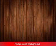Fondo de madera del vector Fotos de archivo