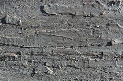 Fondo de madera envejecido, gris pintado imagenes de archivo