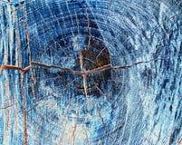 Fondo de madera de la textura, cierre de madera de la corteza para arriba en el estilo de neón o de negativo imágenes de archivo libres de regalías