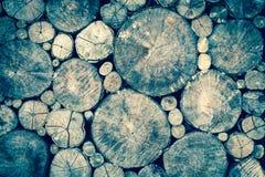 Fondo de madera de la textura o de madera la madera para la decoración exterior interior y la construcción industrial diseñan Imágenes de archivo libres de regalías