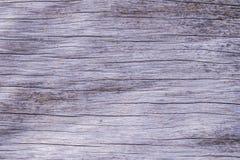 fondo de madera muerto orgánico de la textura imagen de archivo libre de regalías