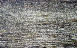 Fondo de madera pintado superficie envejecido agrietado de la textura Imagenes de archivo