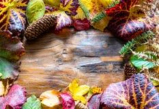 Fondo de madera rústico enmarcado por las hojas de otoño caidas Fotografía de archivo